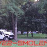 Видео: Водитель на «Ниве» несется в дерево