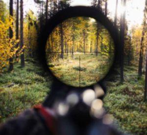 В Смоленской области поймали браконьера
