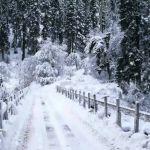 Прогноз погоды на субботу, 26 января