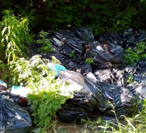 Неравнодушные смоляне очистили от мусора часть улицы Нахимова