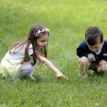Более 50 детей пострадали от укусов клещей