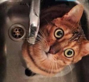 Кто из смолян с понедельника рискует остаться без горячей воды