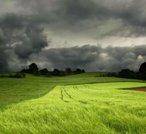 Прогноз погоды на воскресенье, 19 июля