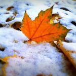 Прогноз погоды на четверг, 15 ноября