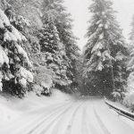 Прогноз погоды на пятницу, 18 января