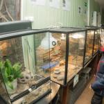 Смоленский зоопарк приостановил работу