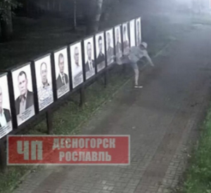 В Смоленской области хулиган «избил» портреты почётных граждан