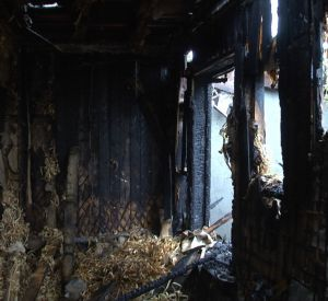 Хозяева лишились двух гаражей, машины и бани