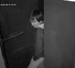 15-летнего маньяка-душителя арестовали полицейские под Смоленском
