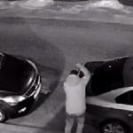Видео: Компания мужчин устроила на парковке возле жилого дома погром