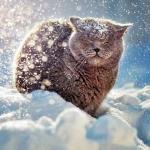 Прогноз погоды на пятницу, 22 января