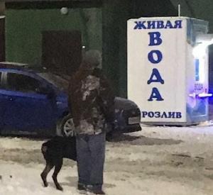 В Смоленске собака прокусила ногу прохожему