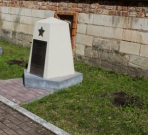 Неизвестные украли две туи из сквера Памяти героев