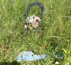 Неустановленные вандалы на Валутиной горе уничтожили памятные знаки (фото)
