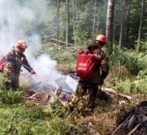 В нескольких районах Смоленщины установлен максимальный класс опасности лесных пожаров (фото)