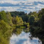 «Горводоканал» накажут за гибель рыбы в реке Гжать