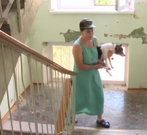 Появились подробности инцидента с ребенком, который провел в квартире с трупами несколько дней (видео)
