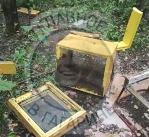 Видео с места нападения медведя на пасеки смоленских дачников появилось в Сети