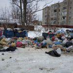 Смоляне возмущены неубранными кучами мусора