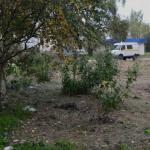 Жители Сафонова жалуются на мусор и грязь