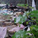 Очередную свалку ликвидировали в Смоленской области