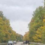 Автомобиль переехал мужчину в Смоленской области