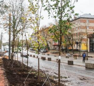 Фото: В Смоленске на улице Николаева приступили к высадке яблонь и живой изгороди