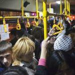 Проезд в общественном транспорте предлагают сделать бесплатным