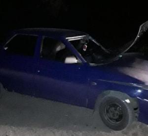 Под Смоленском автомобилистка протаранила дерево