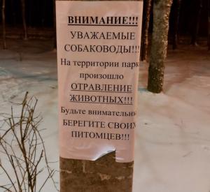В Реадовском парке орудуют догхантеры
