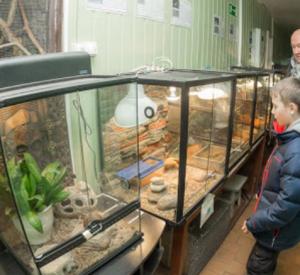 Смоленский зоопарк запустил акцию по сбору лакомства для своих подопечных