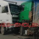 В Смоленской области произошло лобовое столкновение двух фур (фото)