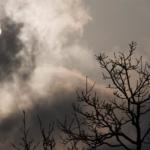 Прогноз погоды на четверг, 19 марта