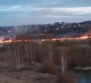 В Смоленской области продолжают гореть поля (видео)