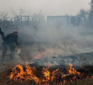 Родителям 11-летнего поджигателя травы грозит штраф и возмещение ущерба