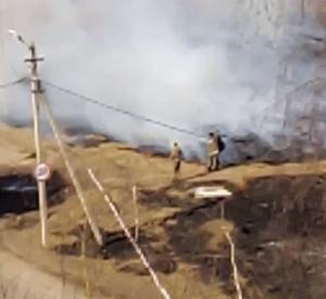 В Смоленской области на видео попало тушение травы штанами
