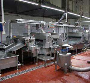 В Смоленске приостановлена деятельность мясоперерабатывающего предприятия