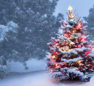 Прогноз погоды на среду, 30 декабря