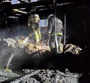 В сети опубликовали видео с места пожара, в котором погибли пятеро детей