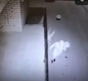 Камеры наблюдения сняли жестокое нападение на смолянку (видео)