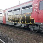 Транспортные полицейские поймали юного смолянина, который разрисовал вагон поезда