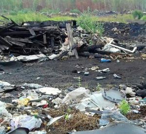 Под Смоленском сообщили об очередной несанкционированной свалке (фото)