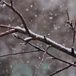 Прогноз погоды на субботу, 23 марта
