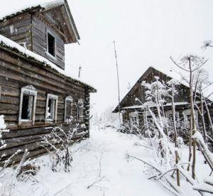 В заброшенной деревне заживо погибают животные, оставшиеся без хозяина