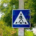 Страшное ДТП в Смоленской области: 9-классницы погибли на глазах у всей школы