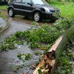 Ураган в Смоленске раздавил автобус