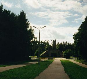 В Смоленске вандалы спилили елки у «Кургана Бессмертия»