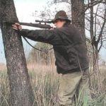 В Смоленской области охотника оштрафовали на 156 тысяч рублей