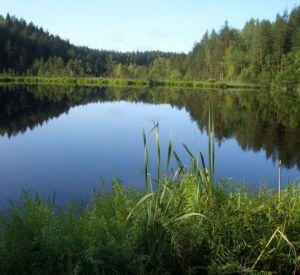 В Смоленской области за два дня утонуло три человека