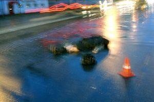 Смолянка погибла на пешеходном переходе
